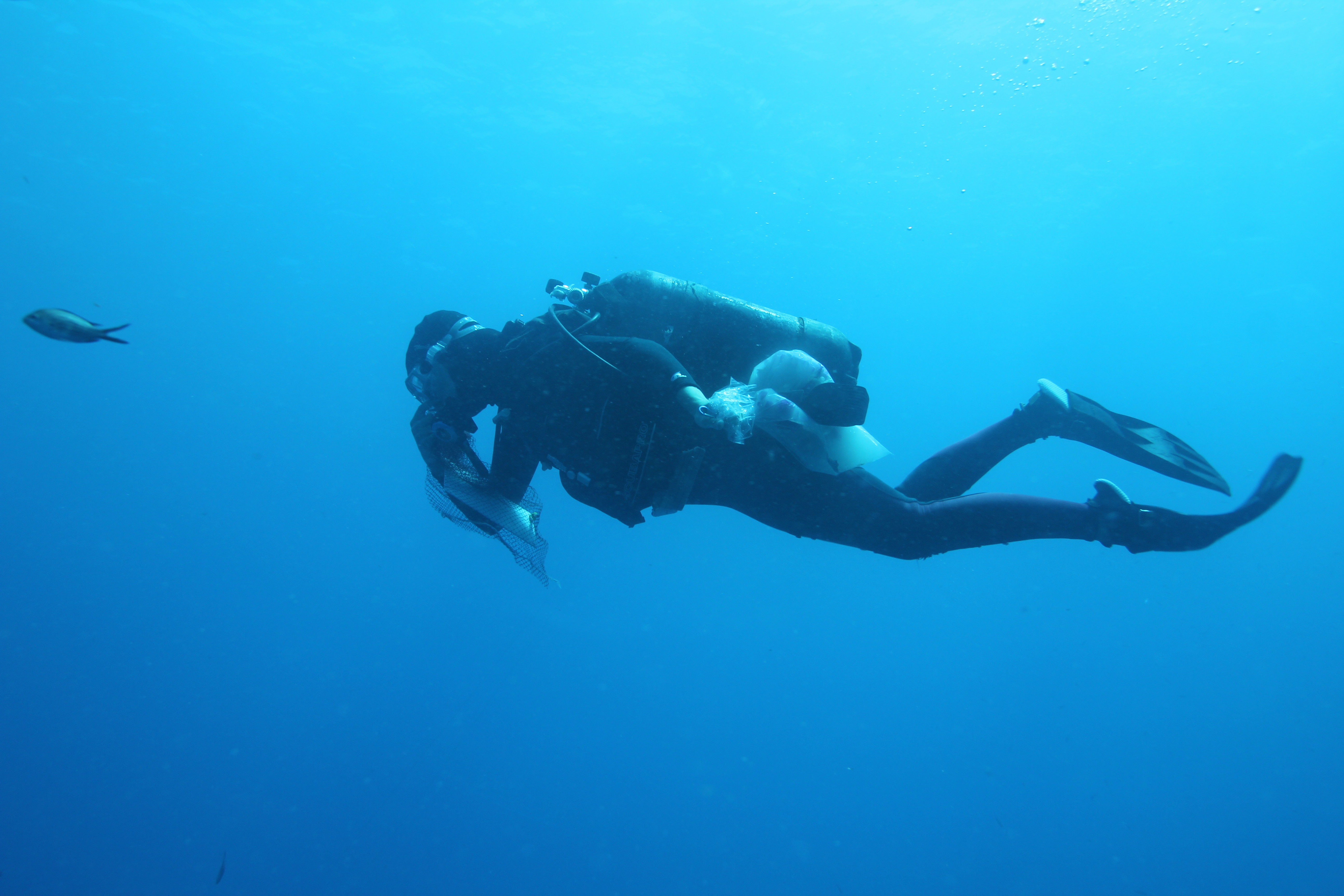 Diving archaeology spain for Spain underwater museum