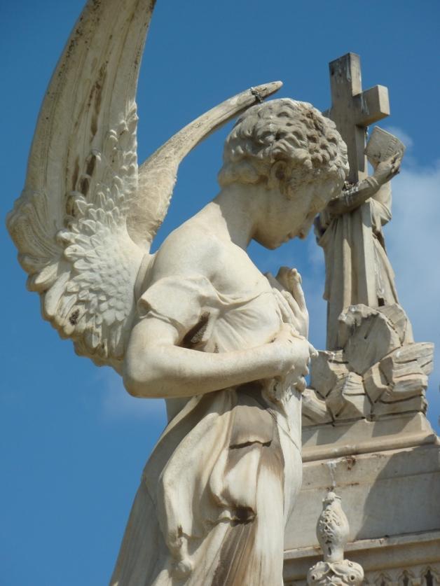Wings © 2009 Veronica Morriss