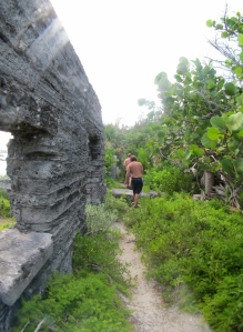 The thorny trail in front of the ruined outbuildings. - Photo by Veronica Morriss © 2012 the Warwick Project